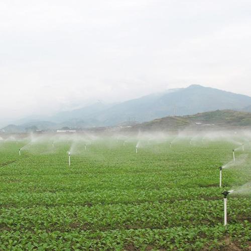 泾阳县高效节水项目