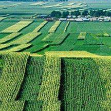 新增千亿斤粮食生产能力建设项目