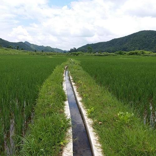 小型农田水利重点县项目
